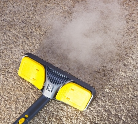 Budget Carpet Cleaning Services Steam Carpet Cleaning
