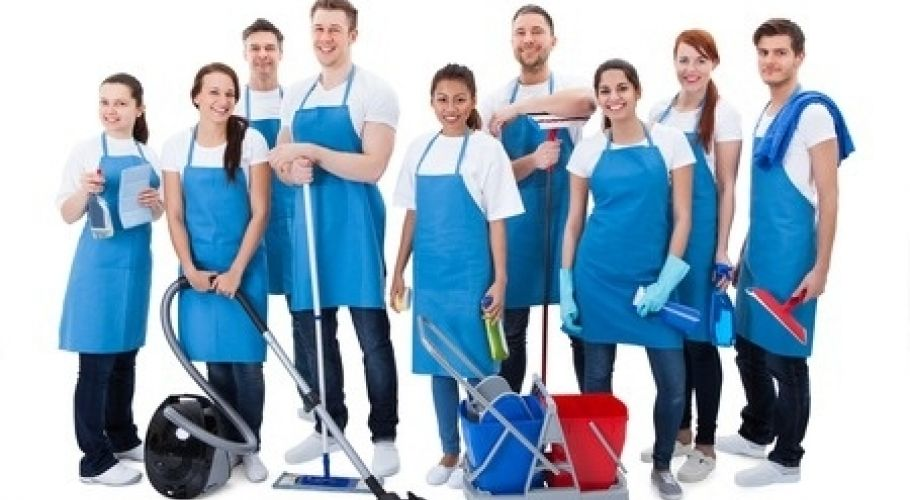 Bee Sure ProfessionaL Cleaning Services Orlando Florida