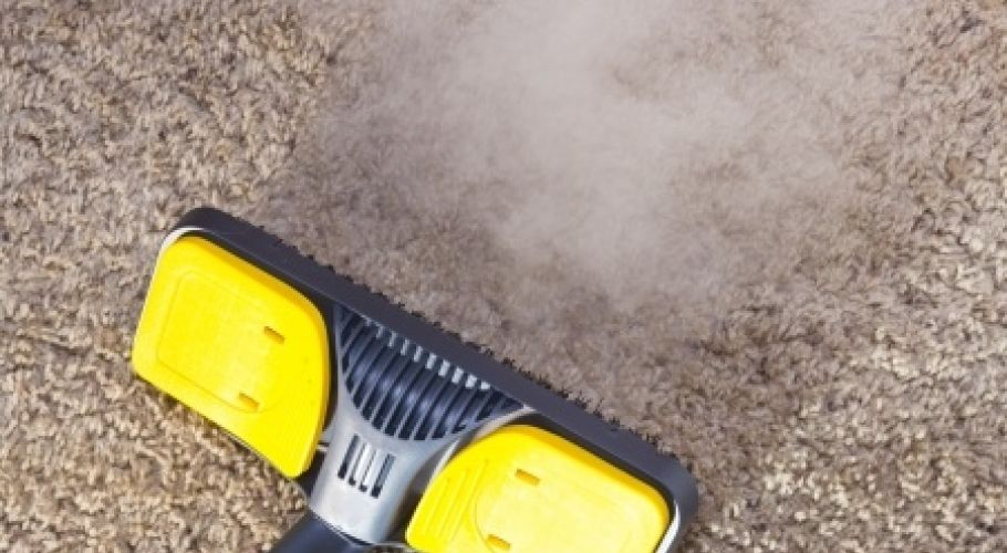 Bee Sure Cleaning Services Steam Carpet Cleaning